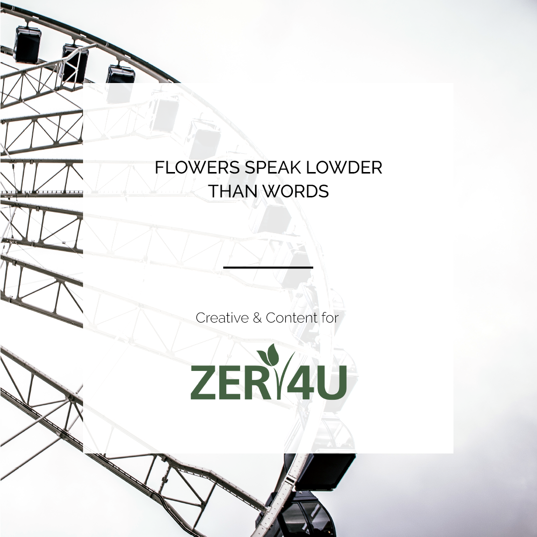 ZER4U | CONTENT & CREATIVE